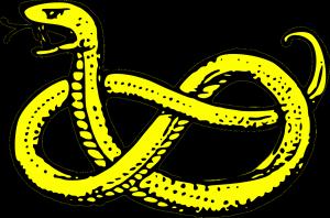 snake-47546_1280
